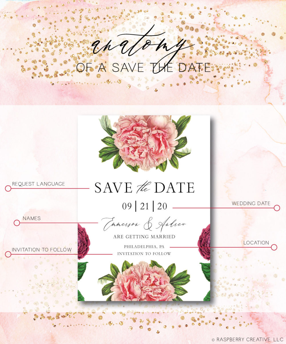 save-the-date-anatomy